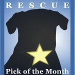Rescue Pick of the Month